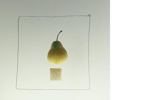 studio camilla santi -sflying sculptures-pear